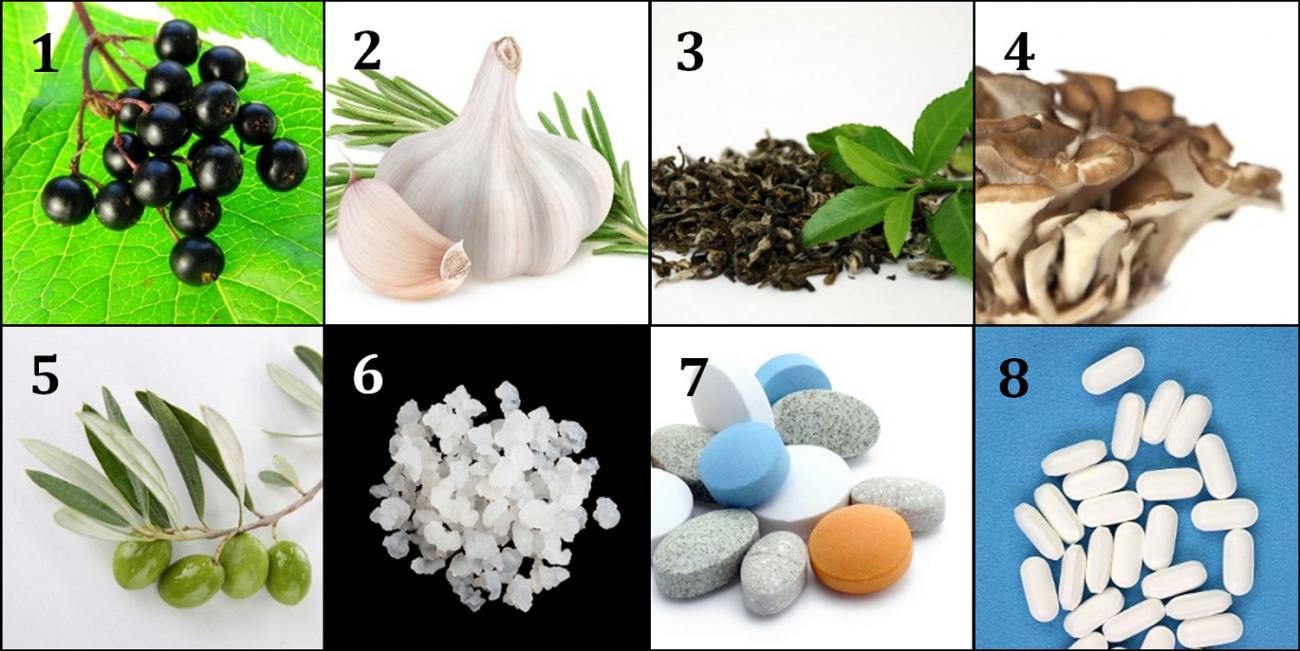 Immunity Boosting Ingredients at Harvest Health Foods