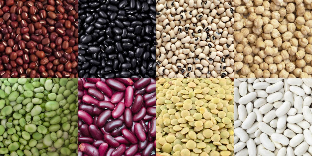 Do You Know Beans? | Harvest Health Foods