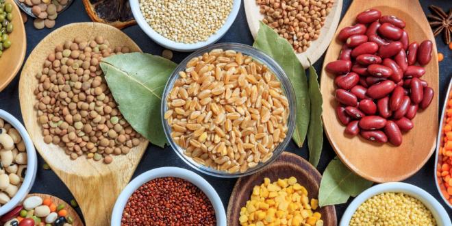 Bulk Foods at Harvest Health Foods