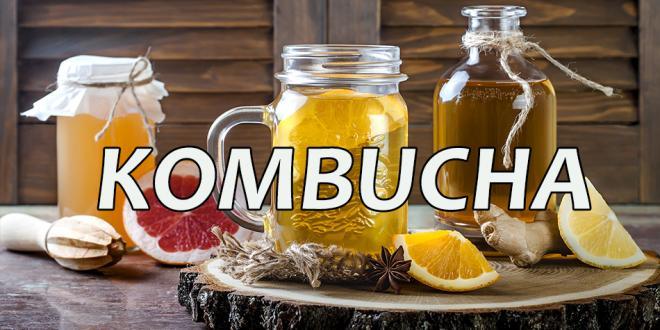 Kombucha - Harvest Health Foods